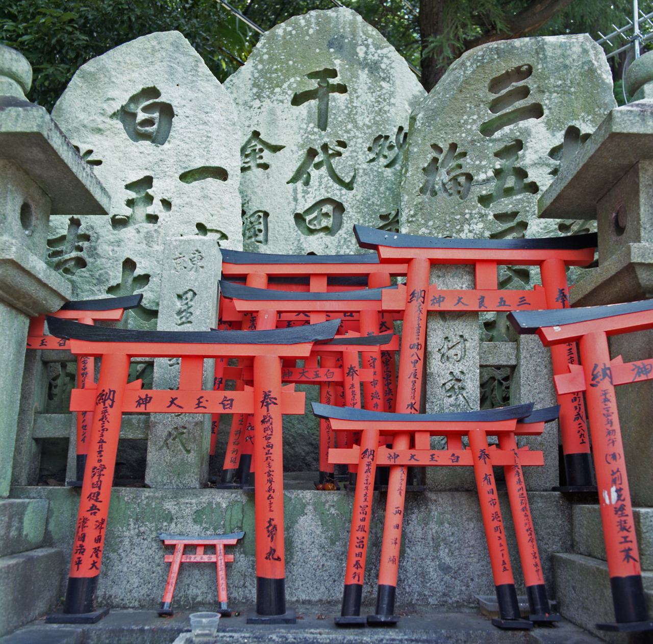 Shrine, Fushimi Inari TaishaView Post