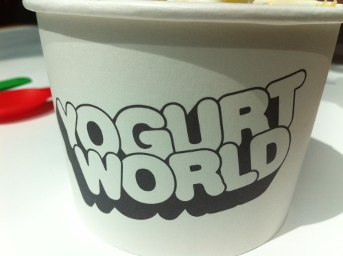 A Yogurt World Opened at Pitt St Westfields at the top level (food court). Its your usual frozen yogurt, and they charge by weight. A bit pricey, BUT~~! let me say they have really fantastic flavours such as CHAI tea, NUTELLA and SALTED CARAMEL. Come on. WHO WOULDN'T WANT THOSE.   Visit us @ http://inlobwithacorns.tumblr.com/ For more Food adventures, and remember kids to share the love! Reblog and like our photos!! No re-posting.