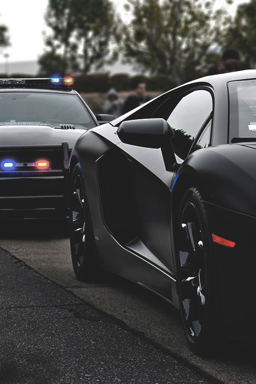 johnny-escobar:  Matte Black Aventador x Mustang Police Interceptor