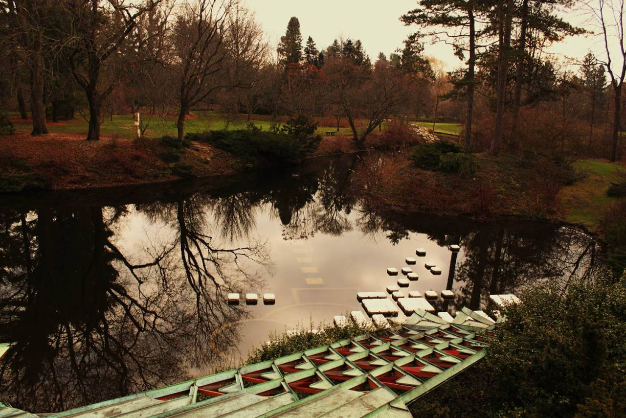 abd-homeandstudio:  A photo of the pond, taken at the Alden B. Dow Home and Studio.