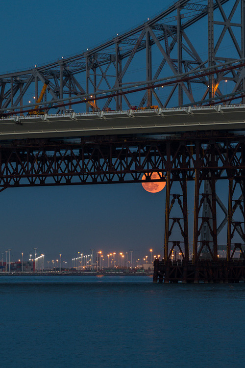 nonconcept:  Supermoon 2012, San Francisco by Toby Harriman.