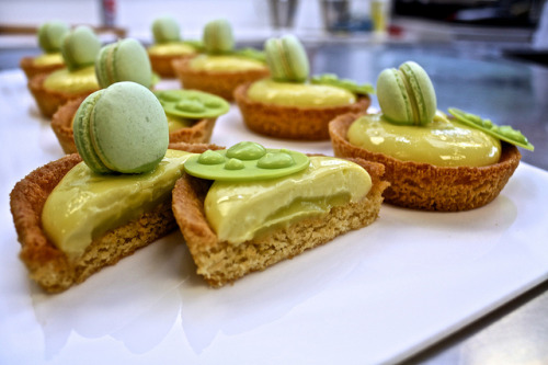 Lime Tarts by SeanCDavies on Flickr.