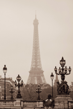 parisianwedding:  A travers la brume… la tour.