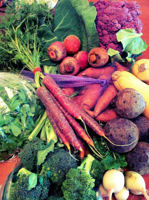 thevegetablemarket:  January 16, 2013. Winter Farmers' Market! (by Boots in the Oven)