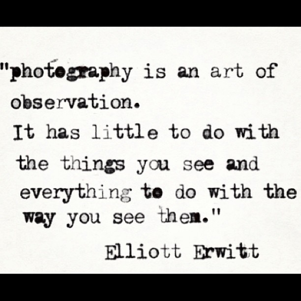 alriight:  #photography #vision #perspective