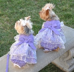 New dog dresses at Doggie Clothesline. These lavender dresses are so cute. Each one comes with a leash and an adorable set of ruffles panties.