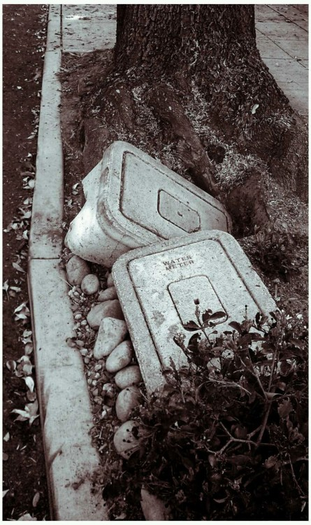 Dislodged water meter boxes. February 2013.