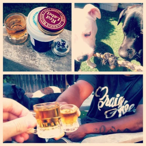 Cheers to the weekend!  #HB #shots #goodlife #smoke #dabs #redlabel #craigave #highfashion #create #summer #dumbdogs