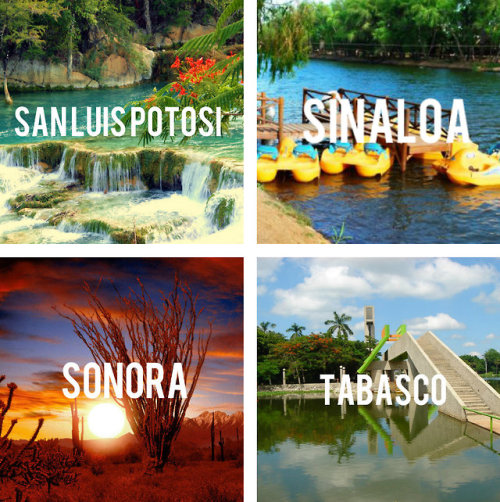 palomavaldez:  lasfloresdemayo:  soleil-oquy:  Nuevo Leon awueeebo  Mi Zacatecas ❤️  ensenada baja california the best