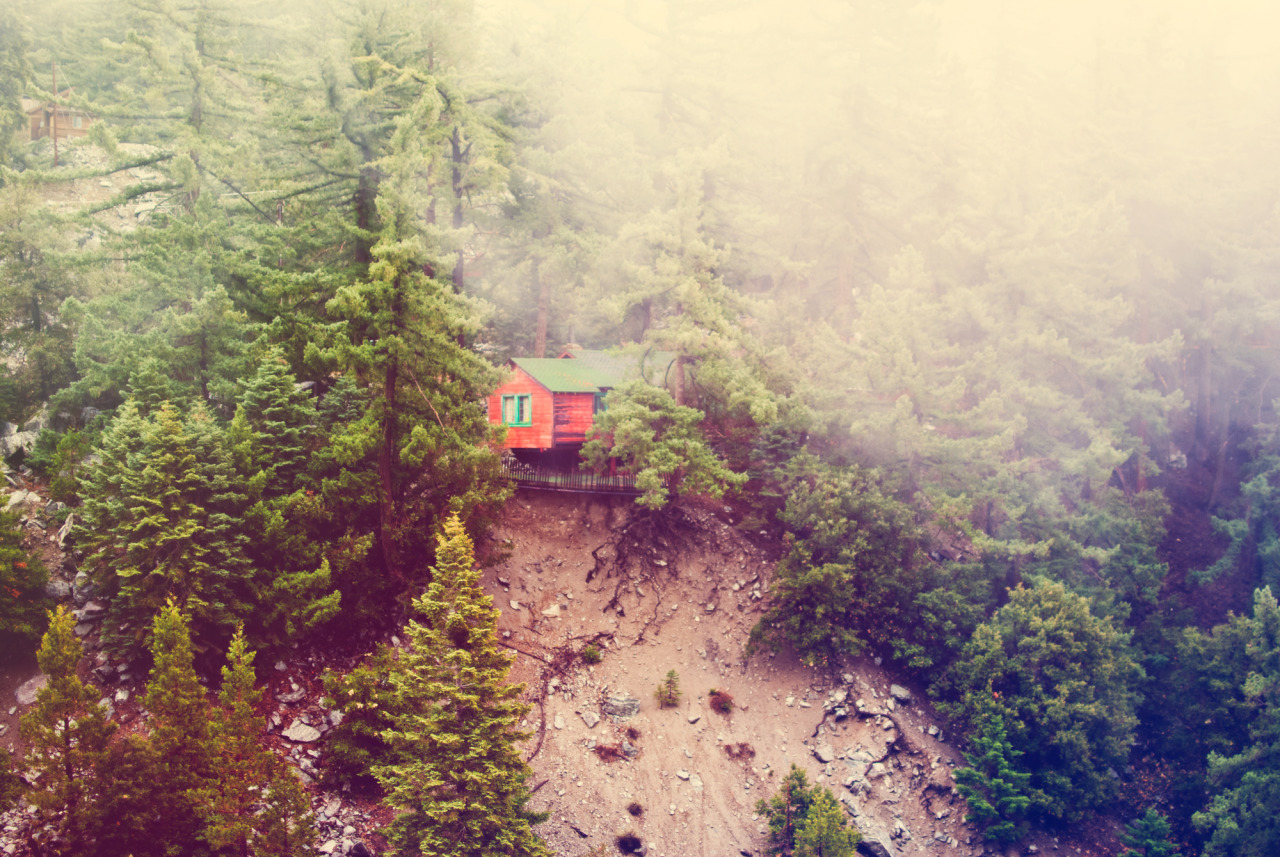 cabinporn:  Cabin near Mt. Baldy, California. Photography by Kyle Smith.