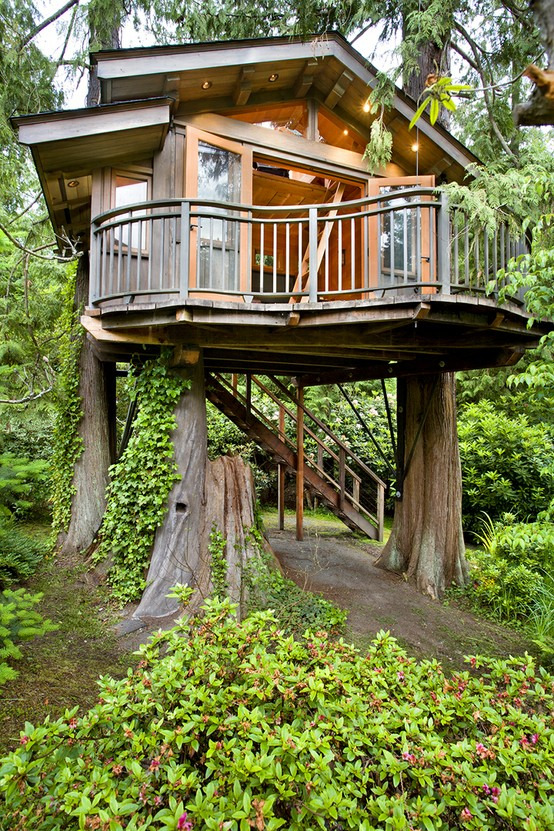 anothergaymormon:  I want to live in a tree house so bad, except mine is going to be more than 10 feet off the ground…