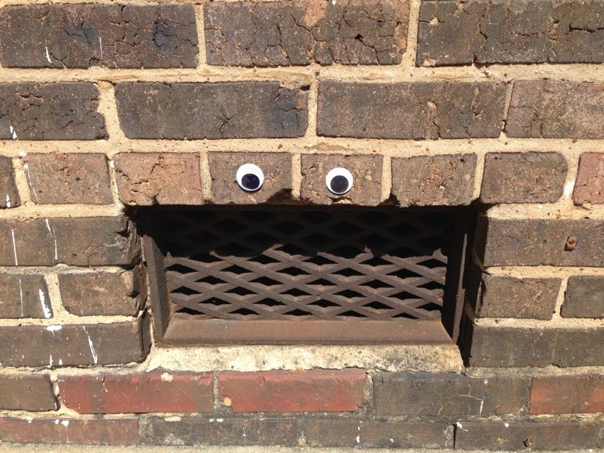 Eyebombing in Alamance County, NC, USA