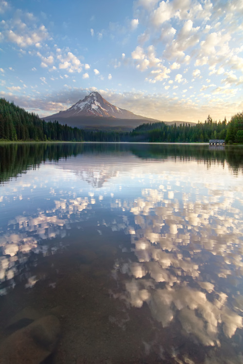 vurtual:  Dreaming of better weather (by Cody Wilson)
