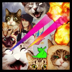 @exiesanalien #cats #laserbeams #meow #lol #buttlicking #waitwhatjusthappened  (at austinfuckingtexas)