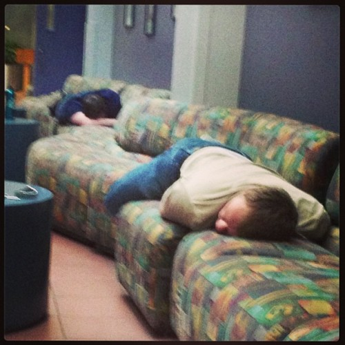 New coworkers on break. #nappingaggies http://bit.ly/17YfU3i