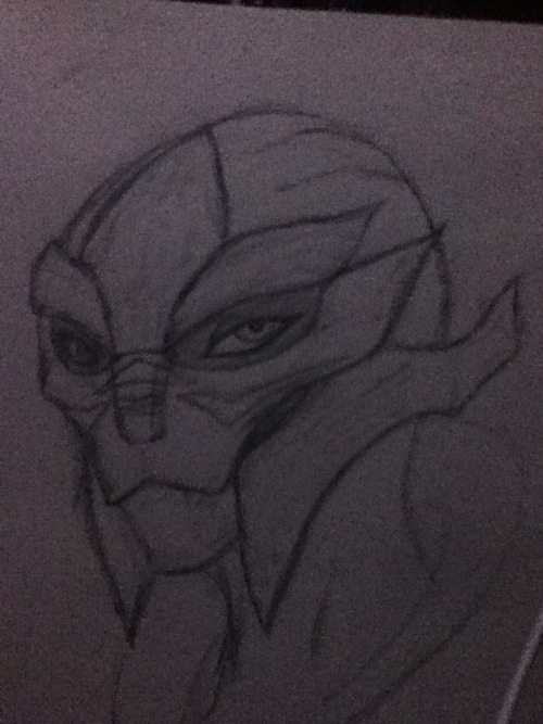 Female turian head drawing.