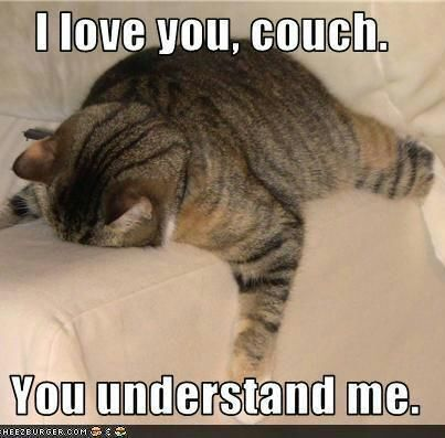 When your couch is your best friend