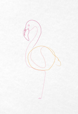 One line flamingo