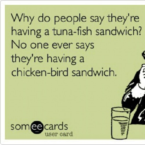jczilleztndn:  #food #sandwhich #true #tuna #fish #chicken #bread #lol #ecards #random  Hahaha!