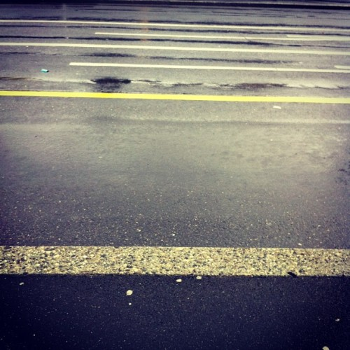 Lines #lines #street #wet #yellow #grey #white #lausanne  (à TL Beaulieu-Jomini)