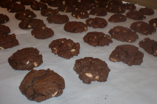 White Chip Chocolate CookiesYields: 60 cookies [It has been ridiculously snowy and cold here for the past few days, and when the weather is like this, it always puts me in the mood to bake. I had some white chocolate chips left over from a recipe from a while ago, and decided that today was the day to use them up. I love these cookies because they are fudge-y without being overly sweet.]Ingredients: 2 1/4 cups of all-purpose flour 2/3 cup of unsweetened cocoa powder 1 teaspoon of baking soda 1/4 teaspoon of salt 1 cup (2 sticks) of butter, softened 3/4 cup of granulated sugar 2/3 cup of brown sugar, packed 1 teaspoon of vanilla extract 2 large eggs 2 cups of white chocolate chips Directions: Preheat your oven to 350 degrees. Combine the flour, cocoa, baking soda, and salt in a small bowl. Set aside. Using a stand or electric mixer, beat the butter, sugar, and vanilla together until they're creamy. Add eggs, one at a time, beating well between each addition.  Gradually beat in the flour mixture. Stir in the chocolate chips. Drop by rounded tablespoons onto an un-greased baking sheets. Bake for 9-11 minutes, until the centers are set. Cool on the baking sheet for two minutes, then move the cookies to wire racks or parchment paper to cool completely. Serve and enjoy! <3