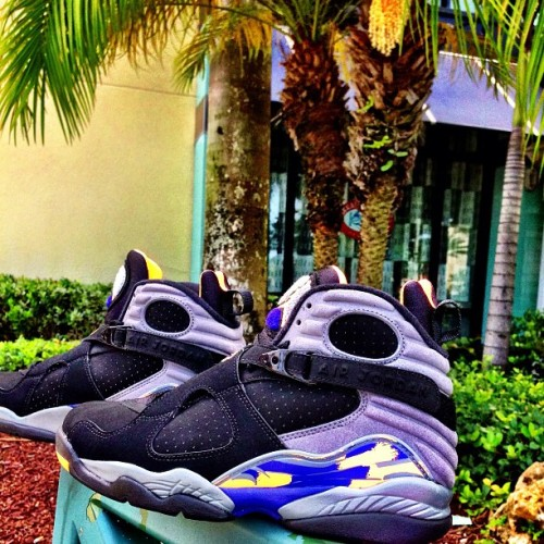 #Jordan8Suns available this Saturday with store opening @SolesInc  #SolesIncSobe (FCFS) #SolesIncCoco (FCFS) #SolesIncLasOlas (FCFS) #SolesIncBoca (tickets available)  (at Town Center At Boca Raton)
