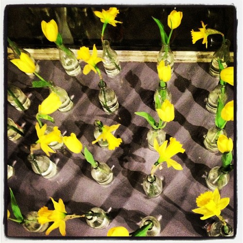Bud vases make plaid argyle shadows at the wine store. #pattern #flowers (at Vine Wine)