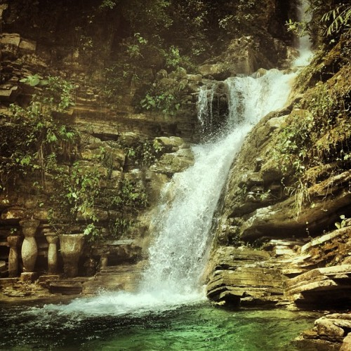 #waterfall #cascade #nature #instanature #water #xilitla #mexico #instamex #mextagram #love #instagood #me #tbt #cute #photooftheday #instamood #beautiful #picoftheday #igers #instadaily #iphonesia #follow #tweegram #happy #summer #instagramhub #cartayen #followback  (en Jardin Edward James Xilitla)