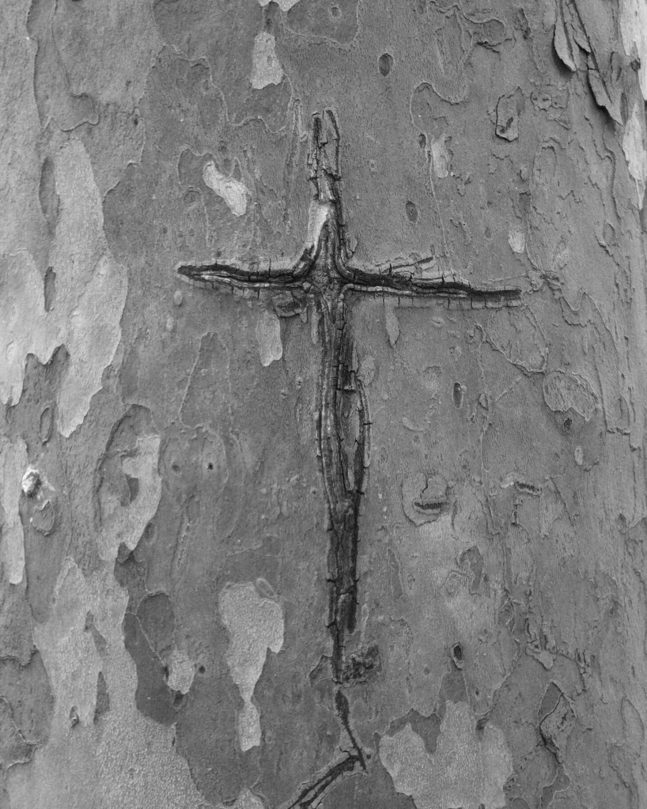 Carved cross // Brooklyn, NYMay 2013