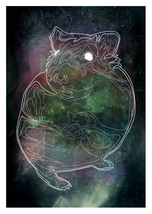 Hamster Constellation