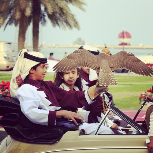 🐦❤ #qatar #doha #2012 #18dec #national_day