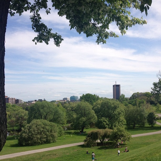 At the Arboretum with Carleton Uni (my uni) in the back #ottawa #canada #home #ilovemytown #vegan #vegansofinstagram #nofilter #summer #sun  (at Arboretum)
