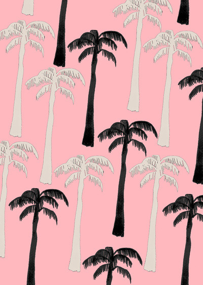true life: i don't think i can live anywhere without palm trees.