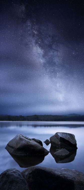 brutalgeneration:  Blue Straggler (by Tim Poulton)