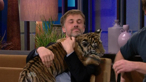 christophwaltzsbeard:  Christoph Waltz cuddling a tiger cub on the TONIGHT SHOW circa March 2010. Insert AWWWW and exploding ovaries emoticons here.