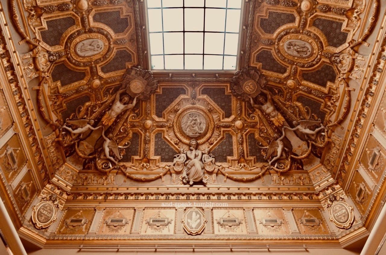 louvre ceilings, paris spring 2019 #architecture#louvre#ceiling#dark academia#opulence#gold#gilding#paris#france#art#sculpture#classical