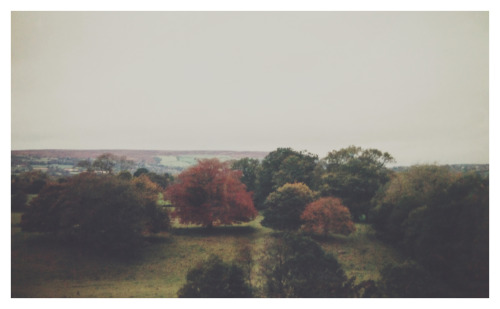 south-england:  Autumn »» Thomas Hanks