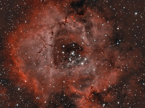 NGC 2237 - The Rosette Nebula by John.R.Taylor on Flickr.