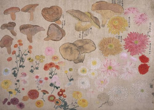 owls-love-tea:  Maruyama Okyo, Page from his Album of Sketches, ca. the 1770s