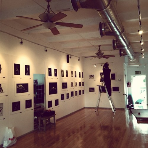 Setting up for the exhibit…finishing touches! #photography #asanas #poses #exhibit #greenmonkey #lululemon #artwalk #art #miami #yoga