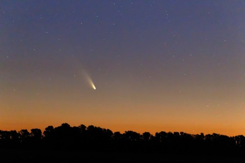 "Don't miss the debut of Comet PanSTARRS this week 2013 has been unofficially dubbed ""The year of the comets"" (and asteroids too, apparently). The first of those comets has been putting on a show in the Southern Hemisphere recently, and is not making it's debut in the Northern Hemisphere."