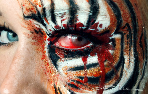 tiger eye makeup cool makeup