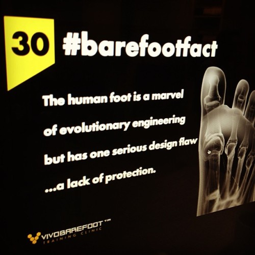 The shoe should let your foot do its thing  #barefootfact 30 The human foot is a marvel of evolutionary engineering but has one serious design flaw … a lack of protection. http://www.vivobarefoot.com/barefoot-facts