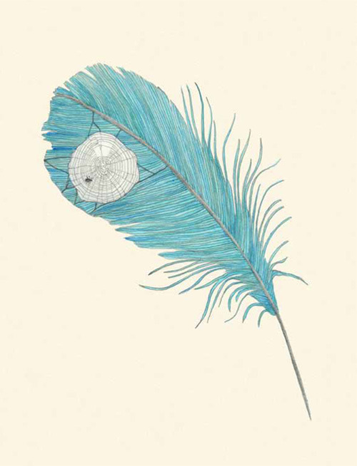 explore-blog:   A FEATHER. A feather is trimmed, it is trimmed by the light and the bug and the post, it is trimmed by little leaning and by all sorts of mounted reserves and loud volumes. It is surely cohesive.  Lisa Congdon illustrates Tender Buttons, Gertrude Stein's avant-garde 1914 verses about everyday objects.