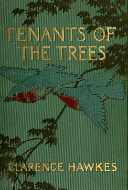 geisterseher:  Clarence Hawkes, Tenants of the Trees (1907) Illustrations by Louis Rhead