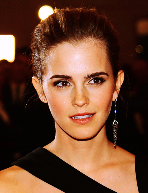 Emma at the 2013 MET Gala