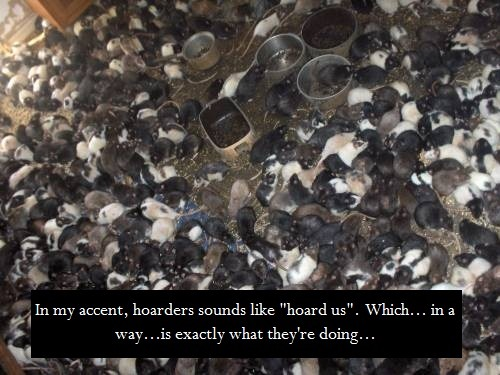 """In my accent, hoarders sounds like ""hoard us"". Which… in a way…is exactly what they're doing…"""