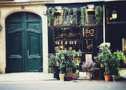 deontile:  my dream flower shop ahhaha