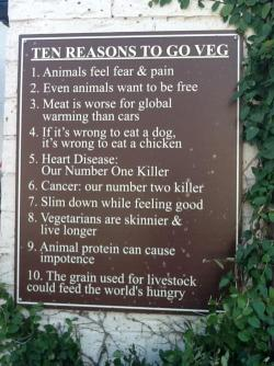 Isn't number 10 kind of giving more reason to eat meat? If my bacon isn't eating anymore, wouldn't he be sacrificing his meal for the hungry?