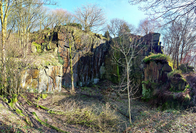 Old quarry - Naze wood on Flickr.
